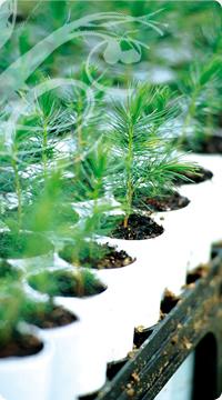 engagement pour la protection de l'environnement